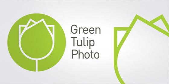 24_green_tulipe