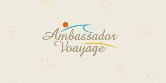 8_ambasador